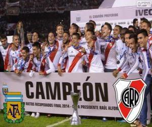 Układanka River Plate, mistrz Torneo Final Argentynan 2014