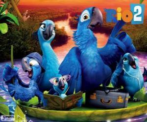 Układanka Rodziny Blu w Amazon