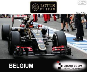 Układanka Romain Grosjean, GP Belgii 2015