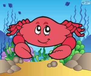Układanka Rysunek kraba