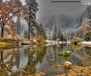 Układanka Rzeki Merced, California