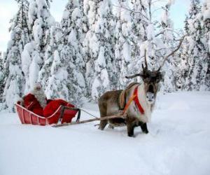 Układanka Santa Claus w jego sanie z reniferami na śniegu