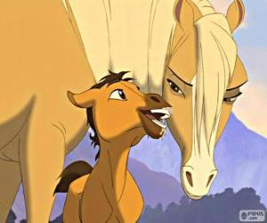 Układanka Scena przetargu filmu, Mustang z Dzikiej Doliny