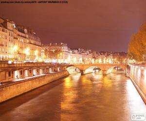 Układanka Sekwany w nocy, Paryż