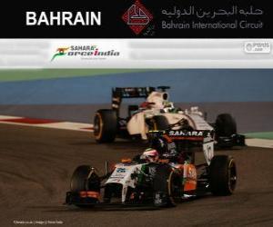 Układanka Sergio Perez - Force India - 2014 Grand Prix Bahrajnu, 3 sklasyfikowane