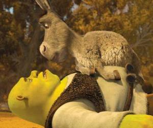 Układanka Shrek i Osioł, patrząc na