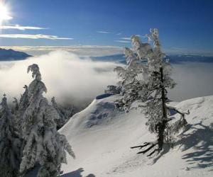 Układanka Snowy góry w Poiana Brasov, Rumunia