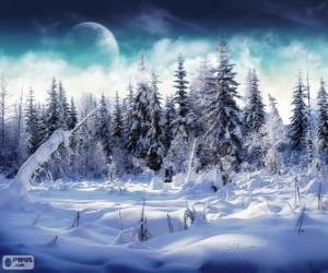 Układanka Snowy lasu