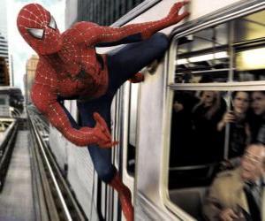 Układanka Spider Man w akcji
