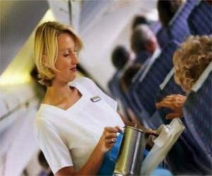 Układanka Stewardesa