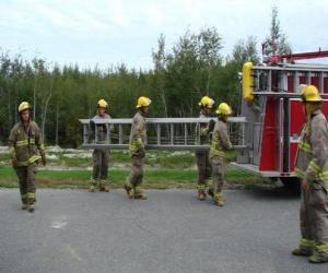 Układanka Strażaków niosących drabiny