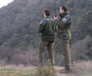 Układanka Straży leśnej