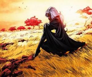 Układanka Super-bohaterki Storm jest członkiem X-Men, znany również jako czarny Pantera