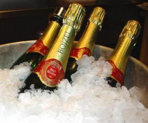 Układanka Szampana (lub szampan) francuskiego szampana, jest rodzajem wina musującego produkowanego przez champenoise metody w regionie Szampania, Francja.