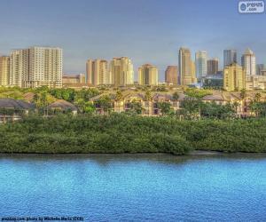 Układanka Tampa, Stany Zjednoczone