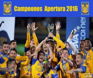 Układanka Tigres UANL, Apertura 2016