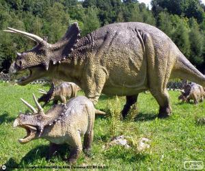 Układanka Triceratops