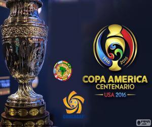 Układanka Trofeum Copa América Centenario 2016
