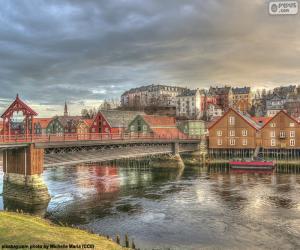 Układanka Trondheim, Norwegia