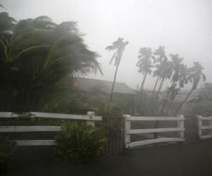 Układanka Tropical Depression