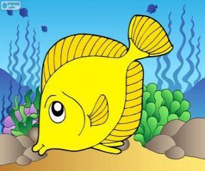 Układanka Tropikalna ryba