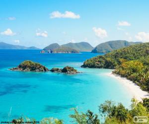 Układanka Tropikalne morze