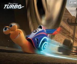 Układanka Turbo, najszybszy ślimak świata