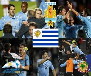 Układanka URU finalista, Copa America 2011