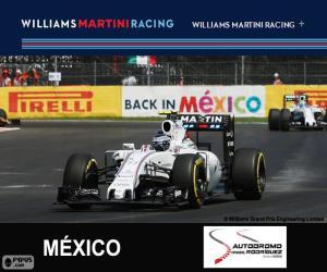 Układanka V. Bottas Grand Prix Meksyku 2015