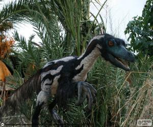 Układanka Velociraptor