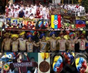 Układanka Wenezuela, 4 sklasyfikowane Copa America 2011