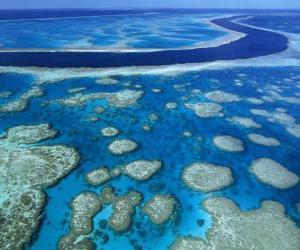Układanka Wielka Rafa Koralowa, rafy koralowe na całym świecie największe. Australia.