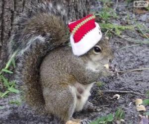 Układanka Wiewiórka z kapelusz Świętego Mikołaja
