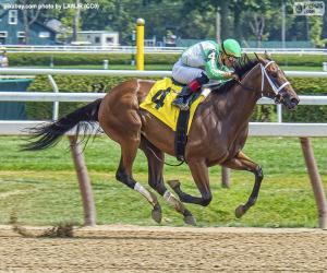 Układanka Wyścigi konne. Koń pełnej krwi z jockey
