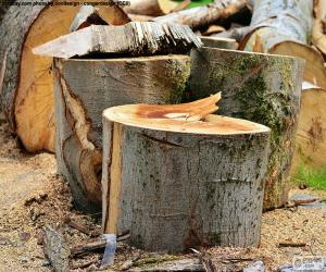 Układanka Wyciąć drzewo