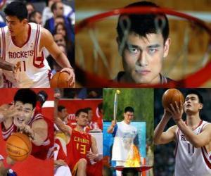 Układanka Yao Ming przechodzi na emeryturę z zawodowej koszykówki (2011)