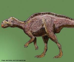 Układanka Zalmokses żył 65 mln lat temu
