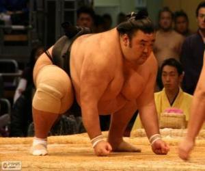Układanka zapaśnik sumo gotowy do walki