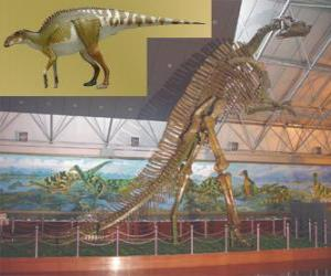 Układanka Zhuchengosaurus jest jednym z największych znanych hadrozaurów