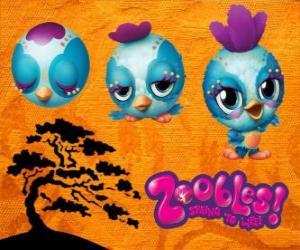Układanka Zooble mały ptak z Petagonia