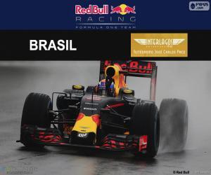 Układanka Zostali: Max Verstappen, Grand Prix Brazylii 2016