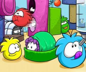 Układanka Zwierzęta Puffles w Club Penguin
