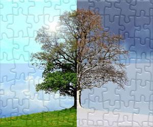 Puzzle Pory roku i Przyjęcie