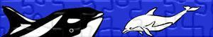 Puzzle Delfiny i innych ssaków morskich
